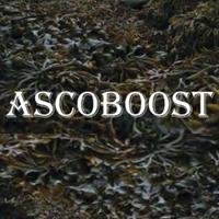 ascoboost