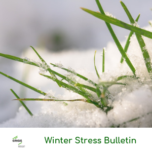 Winter Stress Bulletin